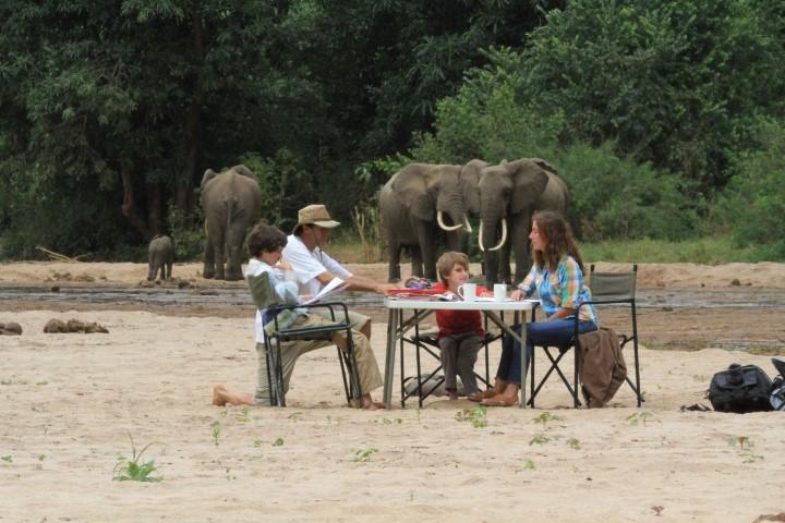 Estudiando con Elefantes. Parque Nac Taranguire, Tanzania (Small)