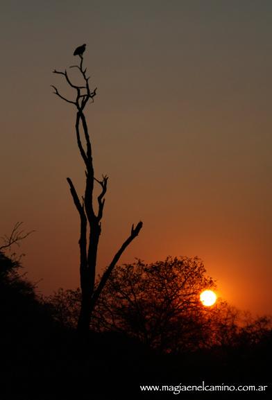 amanecerenbotswana